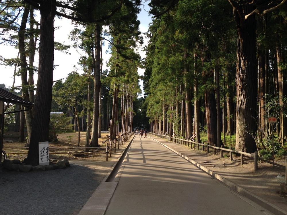 瑞巌寺への道3